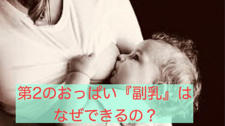 第2のおっぱい「副乳」はなぜできるの?