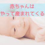 赤ちゃんはどうやって産まれてくるの?