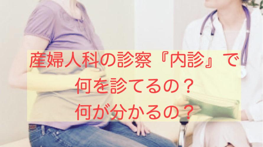 産婦人科の診察『内診』で何を診てるの?何が分かるの?